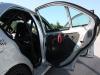 GFK Türen mit Carbontürverkleidung